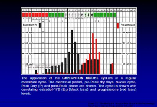 chart cycles
